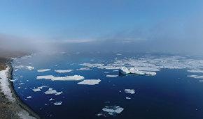 Дистанционная волонтёрская программа по микропластику стартует в нацпарке «Русская Арктика»