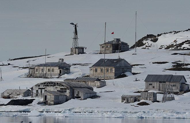 Медведи, песцы и солнечные панели: как живет полярная станция