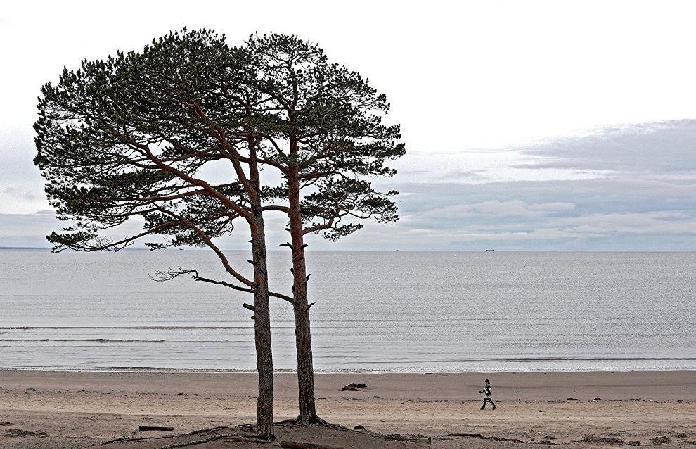 Пропавших в Белом море туристов доставили на материк