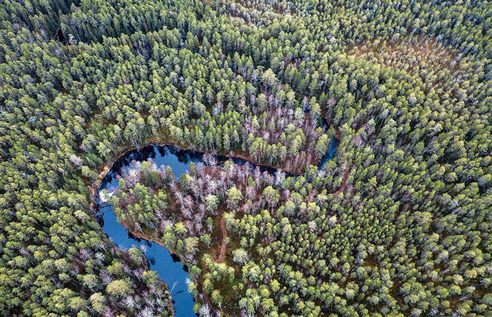 Oreshkin: Karelia should provide building materials for Arctic projects