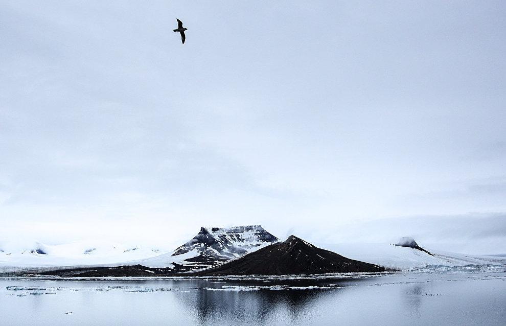 МИД Швеции: Изменения в Арктике не означают отказ от экономических преимуществ региона