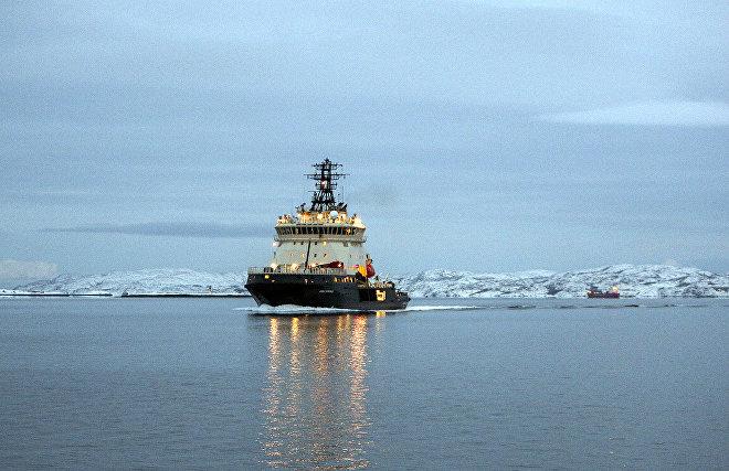 Путин поручил проработать вопросорганизацииарктической экспедиции