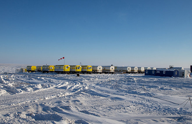 Government coordinates public share in Arctic projects at 50% minus 1 share