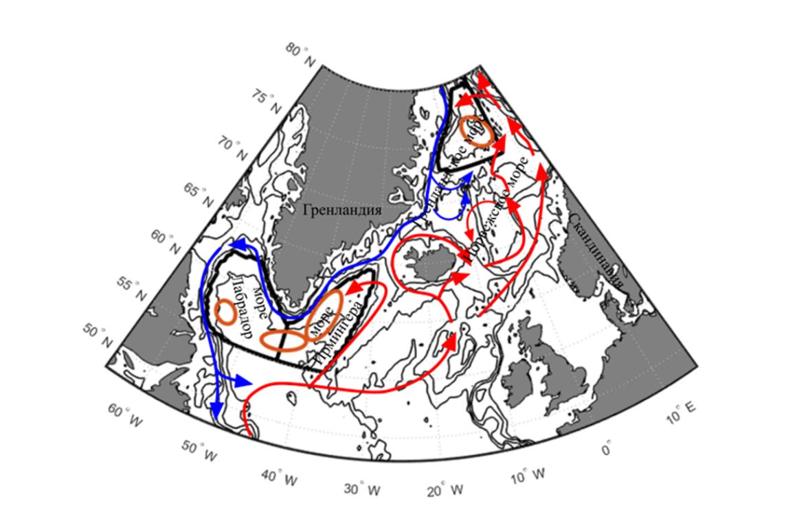 The areas of the global ocean's deep water conveyor