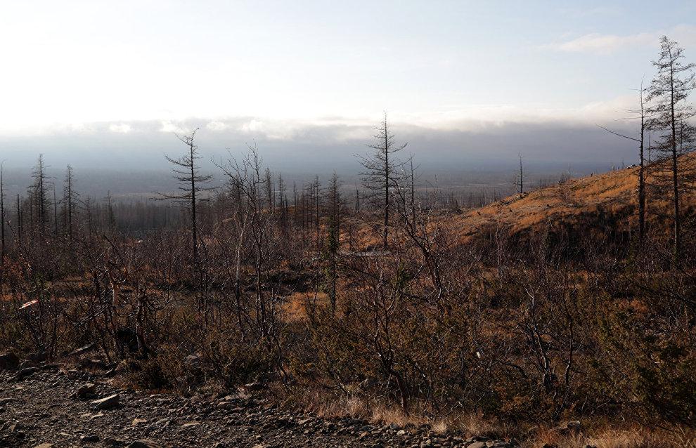 Команда журналистов побывала на экотропе «Красные камни», благоустройство которой планируется закончить в следующем году