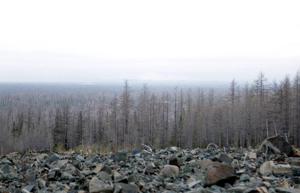 Протяжённость экотропы 4,5 км
