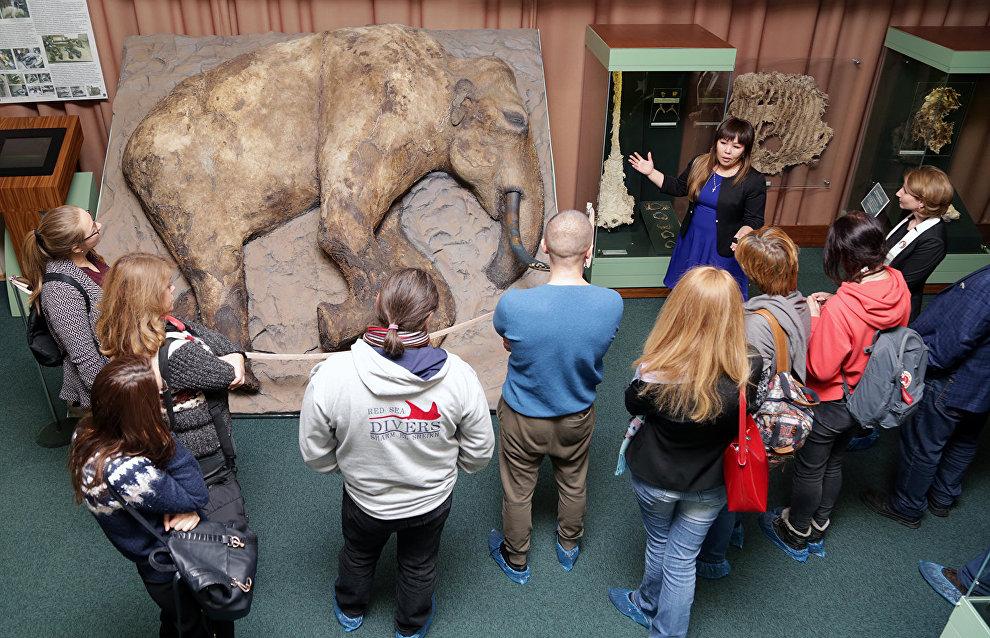Журналисты осматривают тушу мамонтёнка Жени, которого нашли в 2012 году на Таймыре