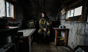 """Wrangel Island"" wins online voting of Andrei Stenin International Press Photo Contest"