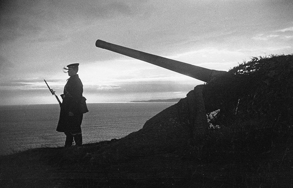 A sailor on duty near a camouflaged gun. The Northern Fleet
