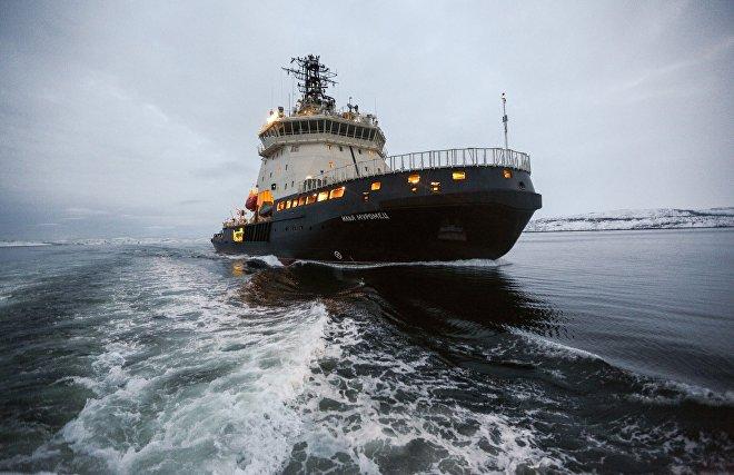 Семь монет и бирюзовая бусинка — находки экспедиции Северного флота и РГО